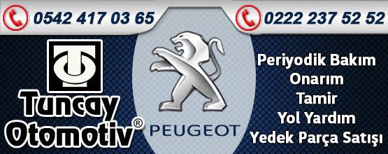 Tuncay Otomotiv Peugeot Servisi